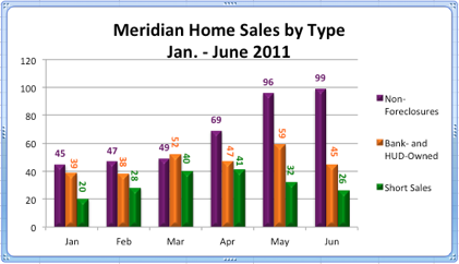 Meridian Idaho Home Sales by Type | Jan.-June 2011